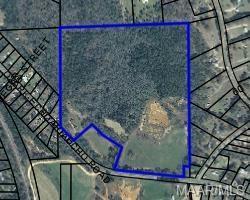 0 Highway 27 ., Ozark, AL 36360 (MLS #445751) :: Team Linda Simmons Real Estate