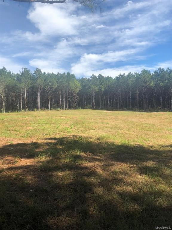 00 County 440 Road, Kinston, AL 36453 (MLS #445893) :: Team Linda Simmons Real Estate