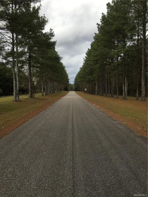 LOT 9 Winterberry Way Development ., Enterprise, AL 36330 (MLS #447235) :: Team Linda Simmons Real Estate