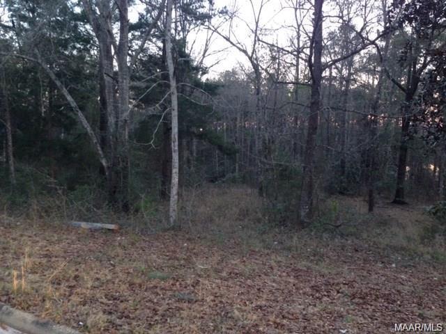 TBD Hickory Tree Lane, Daleville, AL 36322 (MLS #449971) :: Team Linda Simmons Real Estate