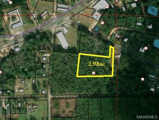 2.98 Acres E County Road 4 ., Geneva, AL 36340 (MLS #452270) :: Team Linda Simmons Real Estate