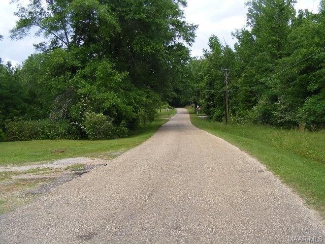0 Beasley Bridge Road, Georgiana, AL 36033 (MLS #456936) :: Buck Realty
