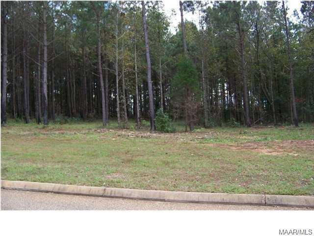 LOT G 2 Longleaf Lane, Greenville, AL 36037 (MLS #457082) :: Buck Realty