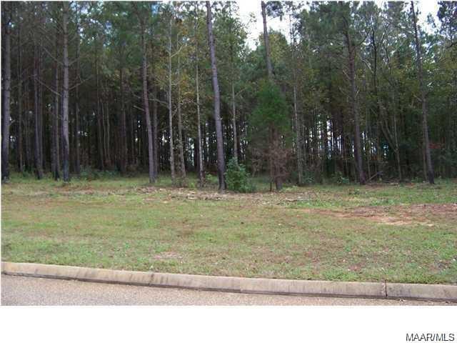 LOT #7A White Oak Way, Greenville, AL 36037 (MLS #457280) :: Buck Realty