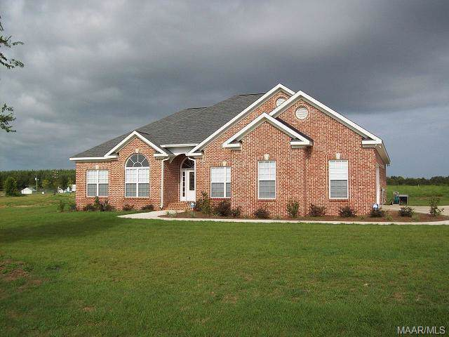 225 Rex Road, Newton, AL 36352 (MLS #463178) :: Team Linda Simmons Real Estate
