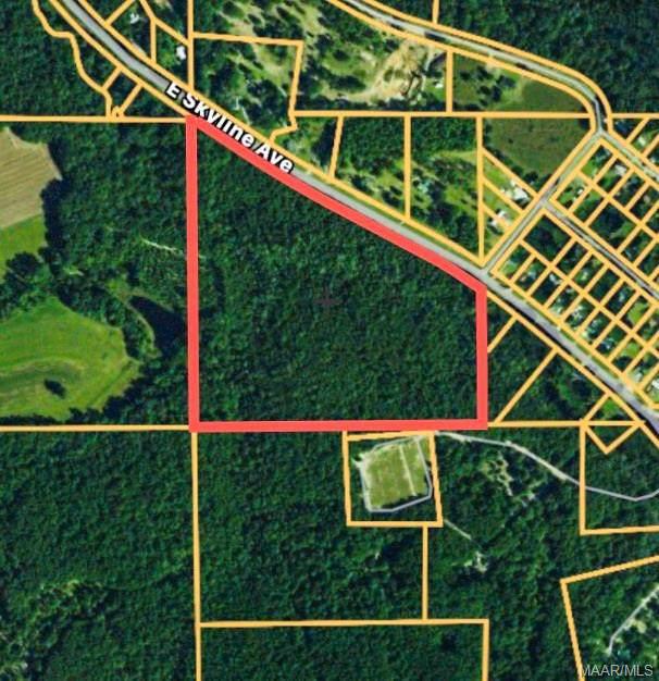 0 E Skyline Avenue, Geneva, AL 36340 (MLS #463272) :: Team Linda Simmons Real Estate