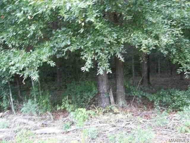 LOT 27 Alcuri Drive, Ozark, AL 36360 (MLS #463466) :: Team Linda Simmons Real Estate