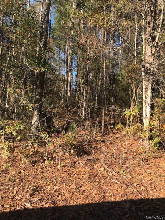 0 Willow Oaks Drive, Ozark, AL 36360 (MLS #467114) :: Team Linda Simmons Real Estate