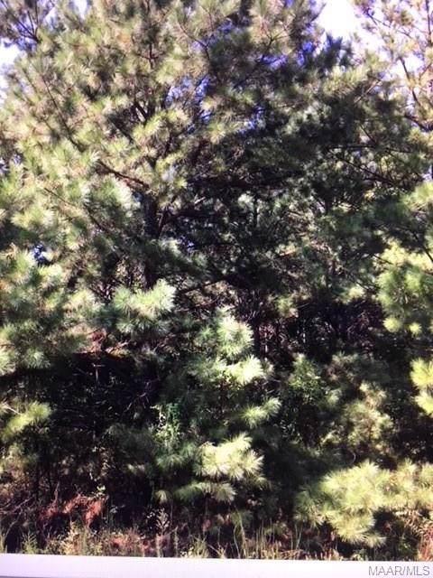 22 Plantation Pines, Tallassee, AL 36078 (MLS #468092) :: Buck Realty