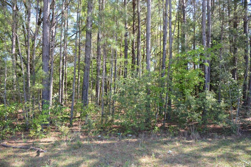 LOT 6 Forest Lake Drive - Photo 1