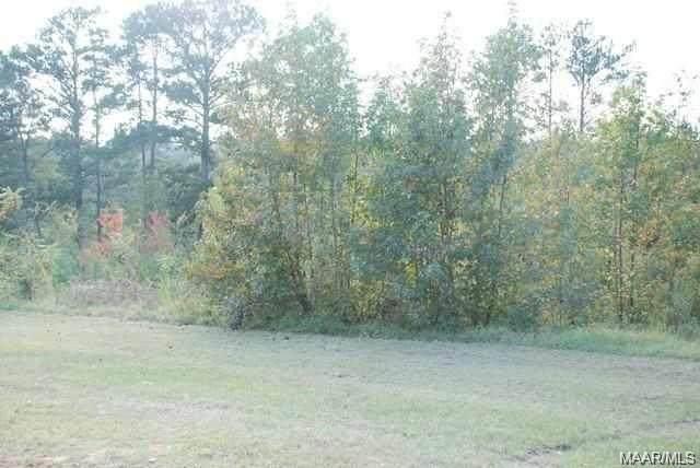 00 Mixon School Road, Ozark, AL 36360 (MLS #468601) :: Team Linda Simmons Real Estate