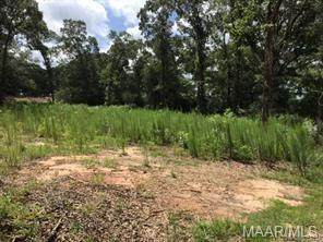 LOT 1 and 2 Rucker Boulevard - Photo 1