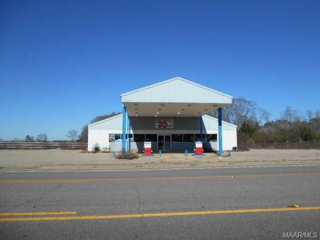 29343 Highway 87 - Photo 1