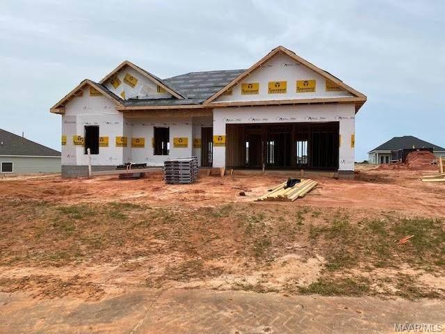 348 Mayberry Way, New Brockton, AL 36351 (MLS #471485) :: Team Linda Simmons Real Estate