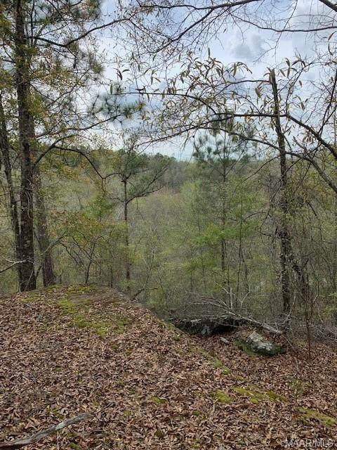 140 Wilderness Way, Wetumpka, AL 36093 (MLS #476673) :: Buck Realty