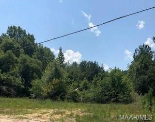 166 Cox Road, Tuskegee, AL 36088 (MLS #477141) :: LocAL Realty