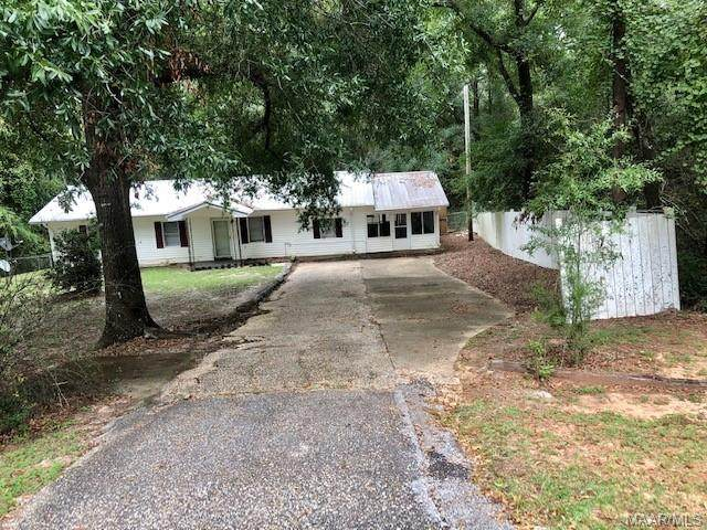 3096 County Road 404, Elba, AL 36323 (MLS #479799) :: Team Linda Simmons Real Estate
