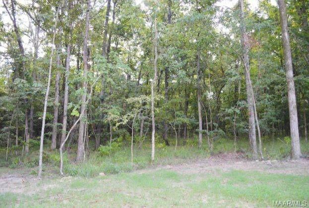 90 Hannah Lane, Pike Road, AL 36064 (MLS #479900) :: Buck Realty