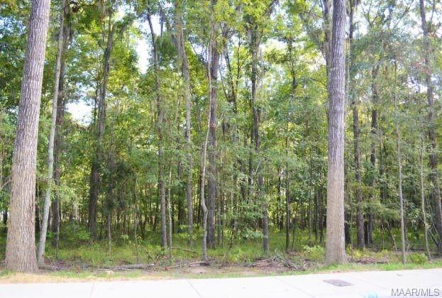 51 Hannah Lane, Pike Road, AL 36064 (MLS #479901) :: Buck Realty