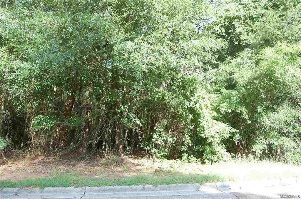 117 Stoneridge Road - Photo 1