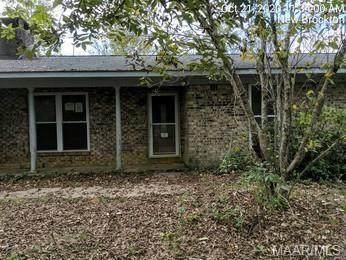 1288 County Road 531, New Brockton, AL 36351 (MLS #484329) :: Team Linda Simmons Real Estate