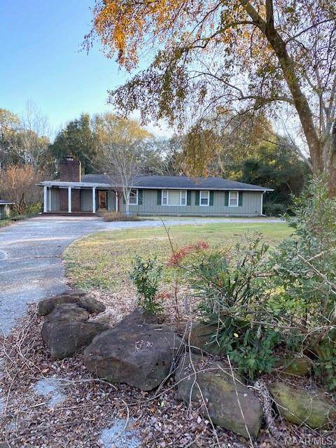 205 Butter And Egg Road, Troy, AL 36081 (MLS #485884) :: Buck Realty