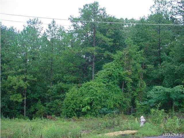 28 Bluebird Court, Deatsville, AL 36022 (MLS #485908) :: LocAL Realty