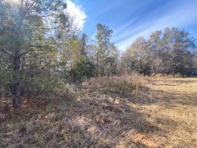 Lot 4 Highway 84, Elba, AL 36323 (MLS #485932) :: Team Linda Simmons Real Estate