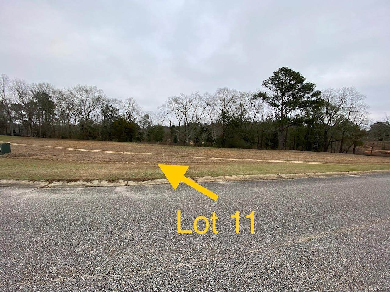 lot 11 Ridge Road - Photo 1