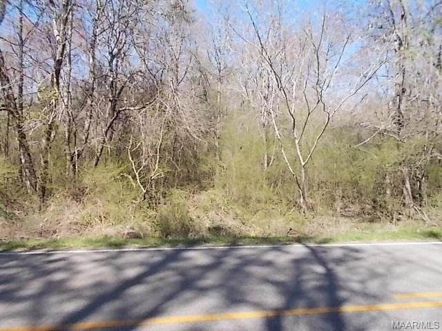 00 County Road 68 Road - Photo 1