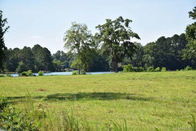 3 Lakeshore Drive, Millbrook, AL 36054 (MLS #496965) :: Buck Realty