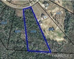 Lot 35 County Road 558, Enterprise, AL 36330 (MLS #498884) :: Team Linda Simmons Real Estate