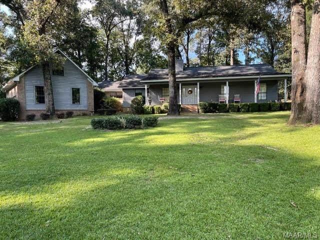 8183 Highway 85, Chancellor, AL 36316 (MLS #503120) :: Team Linda Simmons Real Estate