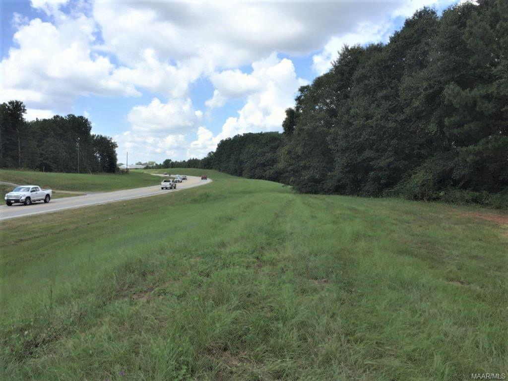 71 ACRES Boll Weevil Circle - Photo 1