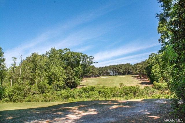 0 Royal Parkway, Dothan, AL 36305 (MLS #W20180742) :: Team Linda Simmons Real Estate