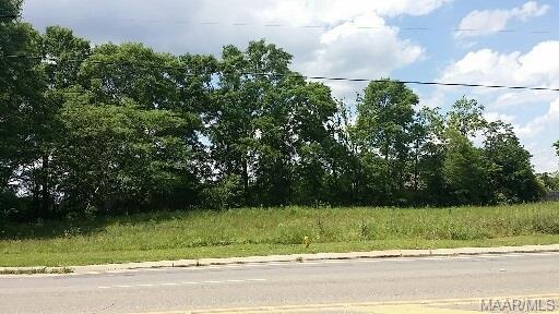 1298 Geneva Highway ( 27 S), Enterprise, AL 36330 (MLS #W20181088) :: Team Linda Simmons Real Estate
