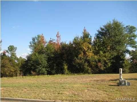 194 Macallister Ridge, Millbrook, AL 36054 (MLS #259378) :: Buck Realty
