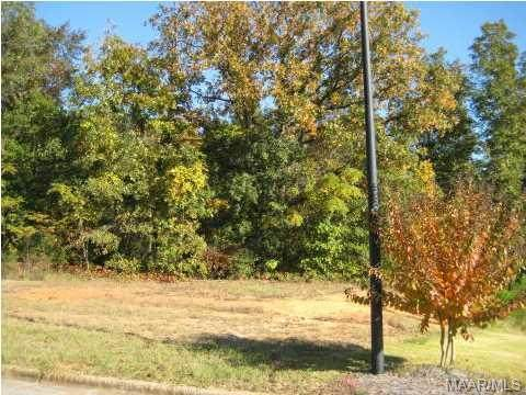 574 Mckeithen Place, Millbrook, AL 36054 (MLS #259386) :: LocAL Realty
