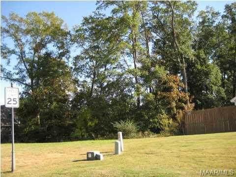 48 Macallister Ridge, Millbrook, AL 36054 (MLS #259417) :: Buck Realty