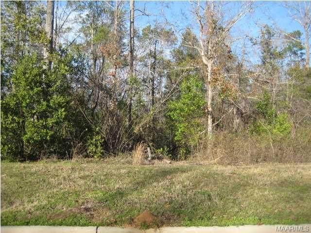 539 Plantation Crossing, Millbrook, AL 36054 (MLS #290480) :: Buck Realty