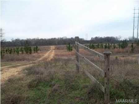 3455 Jackson Ferry Road Lot 10, Montgomery, AL 36104 (MLS #323030) :: Buck Realty