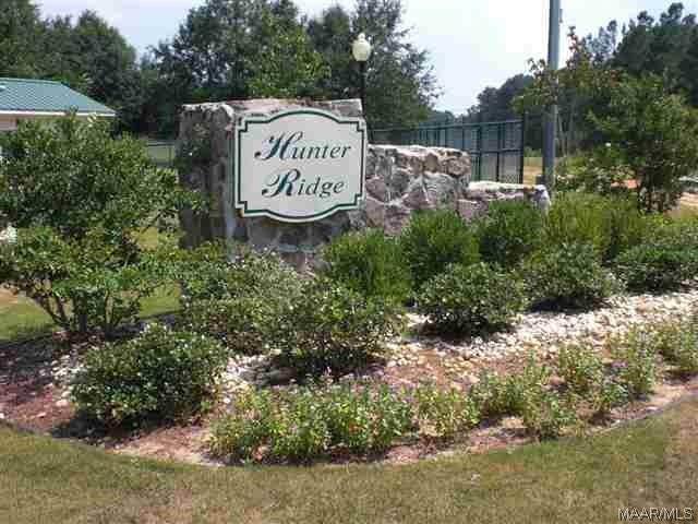 Lot 31 County Road 172, New Brockton, AL 36351 (MLS #439023) :: Team Linda Simmons Real Estate