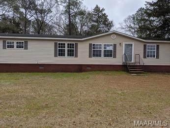 150 County Road 223, New Brockton, AL 36351 (MLS #469307) :: Team Linda Simmons Real Estate