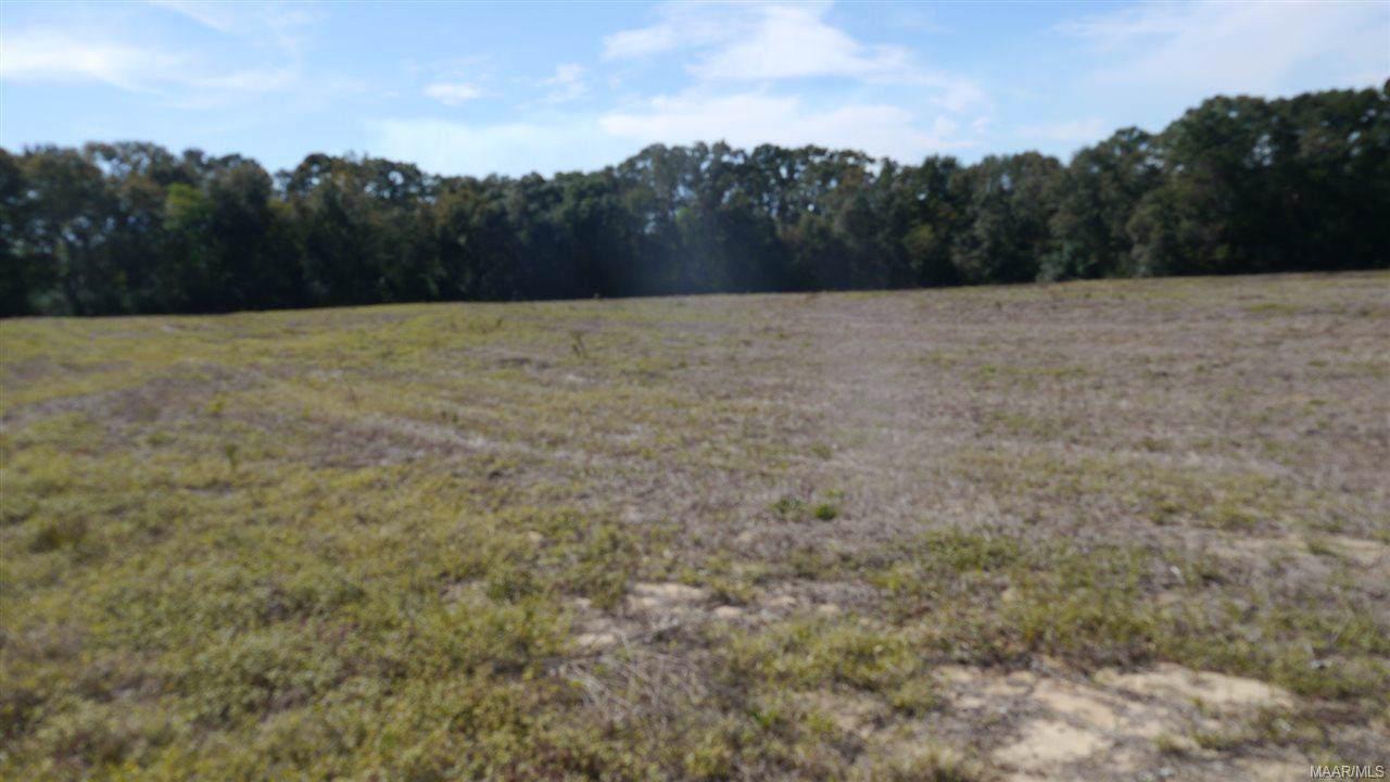 27 acres MOL County Road 708 - Photo 1