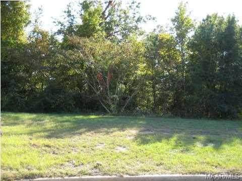 61 Fitzpatrick Point, Millbrook, AL 36054 (MLS #259391) :: Buck Realty