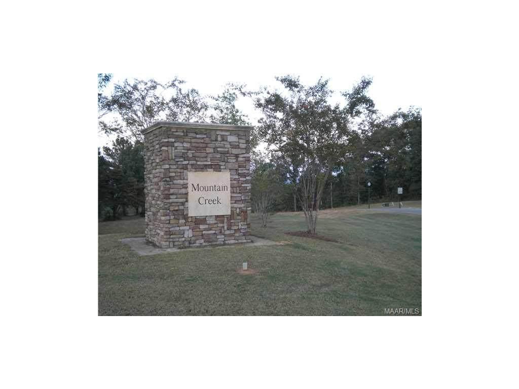 2525 Mountain Creek Drive - Photo 1