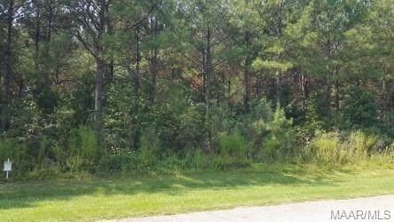2035 Robinson Pond Road, Prattville, AL 36067 (MLS #460855) :: Buck Realty