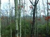 8 Mutt Ridge - Photo 1