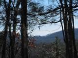 Lot 13 Golden Mountain - Photo 1