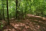 00 Dogwood Trail - Photo 14